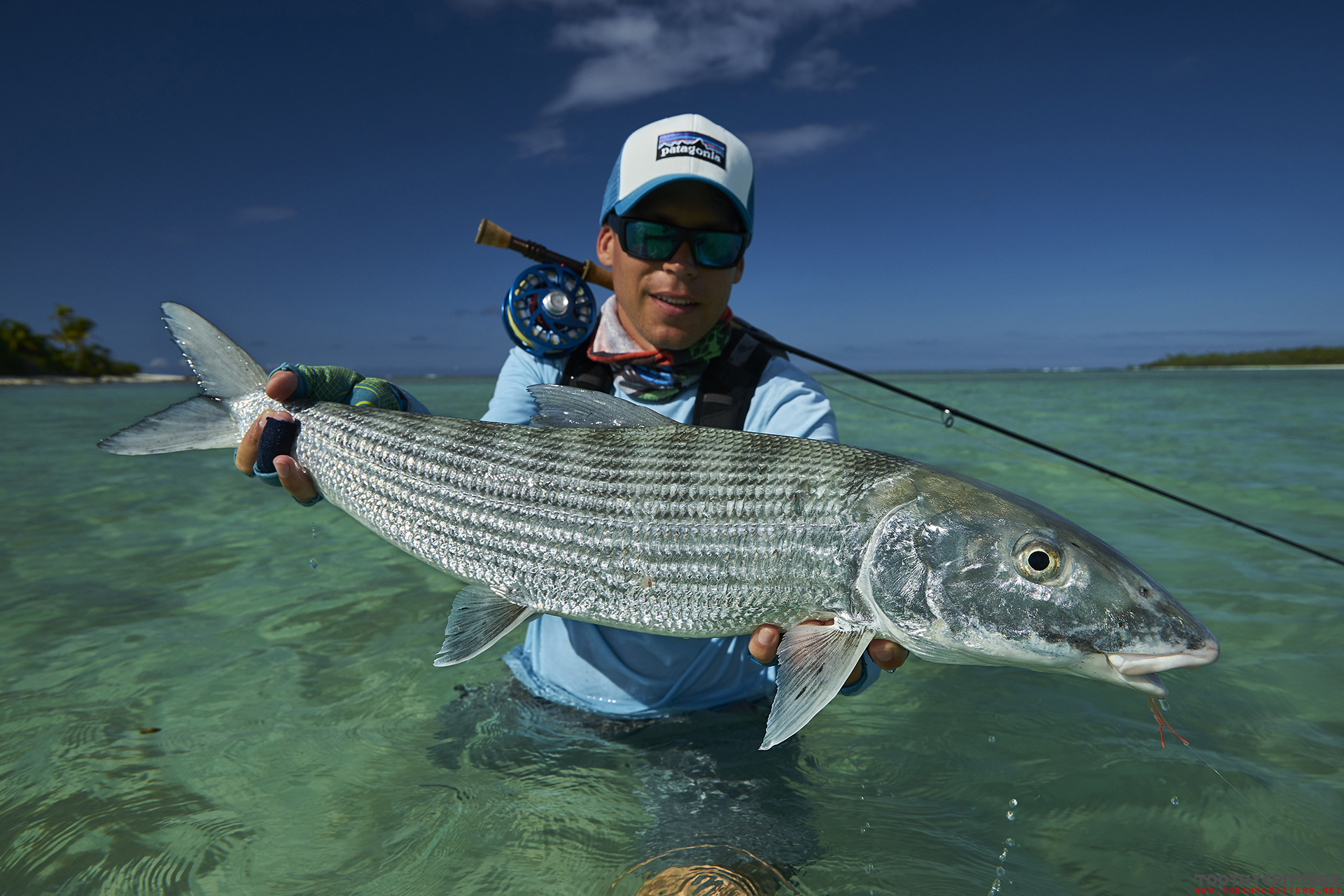 Fly fishing on aitutaki for bonefish and giant trevally for Bonefish fly fishing