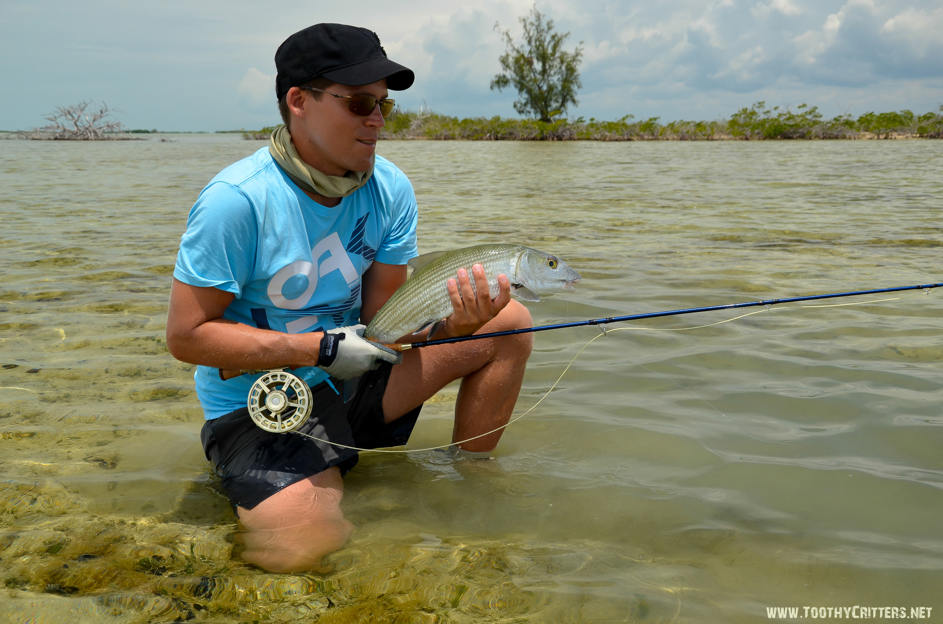 Fly fishing in cuba for bonefish and tarpon fly fishing blog for Fly fishing guides near me