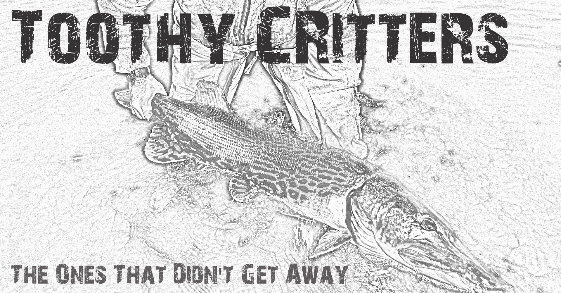 ToohtyCritters