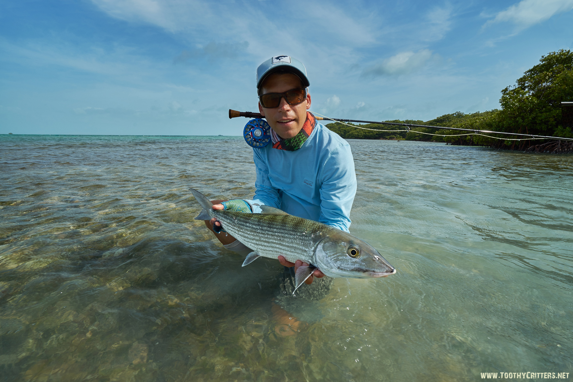 Los roques fly fishing for bonefish permit and shark for Bonefish fly fishing