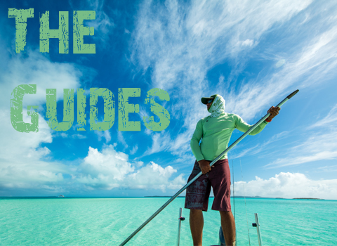 ToothyCritters Aitutaki The Guides
