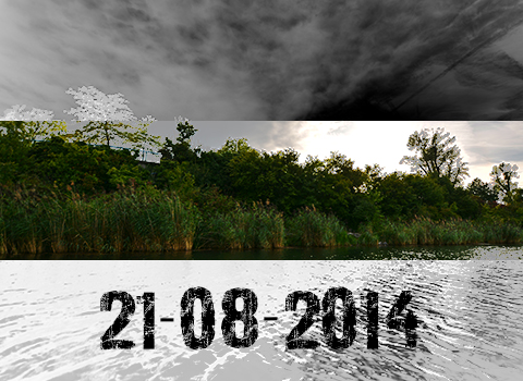 ToothyCritters Alte Donau Days 20140818