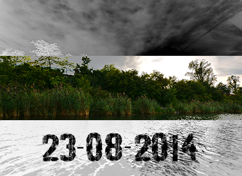 ToothyCritters Alte Donau Days 20140823