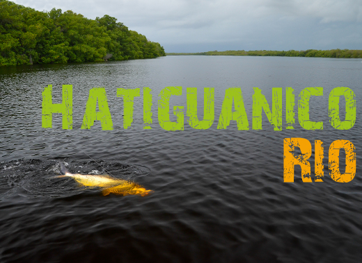 ToothyCritters Cuba Rio Hatiguanico