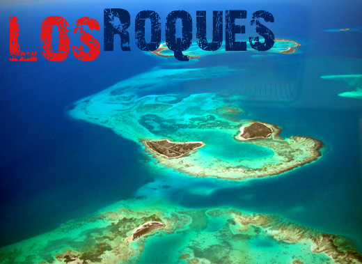 ToothyCritters LosRoques