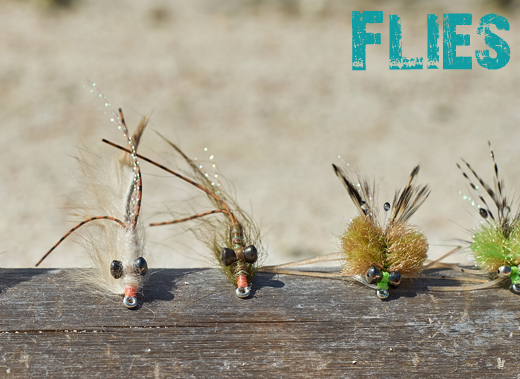 ToothyCritters LosRoques Flies
