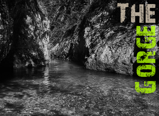 ToothyCritters Trout The Gorge