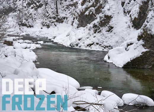 ToothyCritters Trout deep frozen